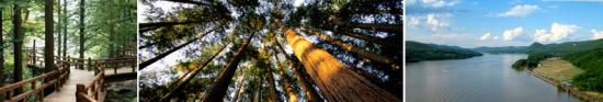 Real Estate Land Use Zoning Environmental
